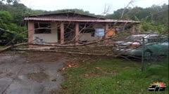 Arbol cae en residencia en Lajas