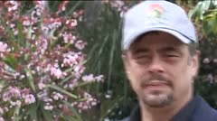 Benicio del Toro recibir� el segundo premio Donostia